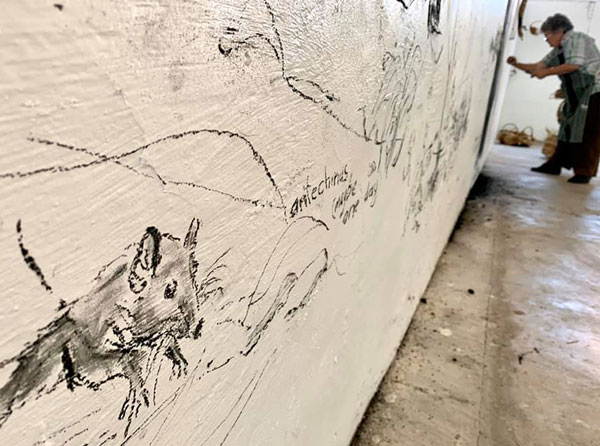 Close up of a charcoal drawing on a wall. Arist seen in background.